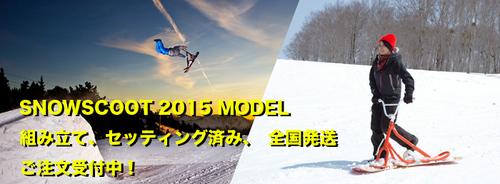 2015scoothead.jpg