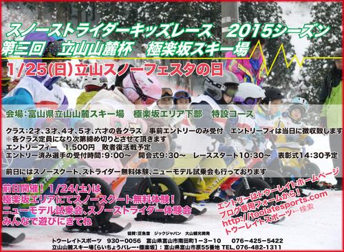 snowstrider_2015_web.jpg