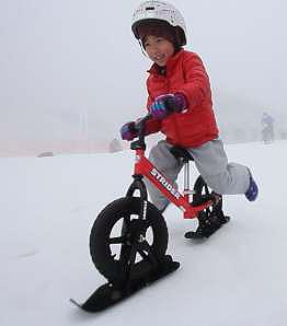 snow_strider4.jpg