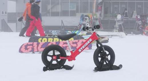 strider_snow1.jpg
